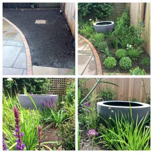 Reigate Surrey Garden Planting Project