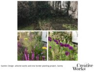 Cindy Kirkland Creative Works Garden Design, arborist works and new border planting project, Surrey