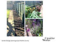 Cindy Kirkland Creative Works Garden Design planting project Redhill, Surrey