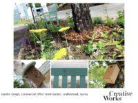 Garden Design, Commercial Office Front Garden, Leatherhead, Surrey