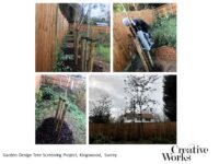 Garden Design Tree Screening Project, Kingswood, Surrey