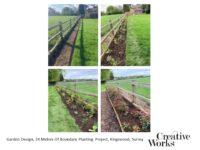 Garden Design, 34 Metres Of Boundary Planting Project, Kingswood, Surrey