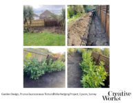 Garden Design, Prunus laurocerasus 'Rotundifolia Hedging Project, Epsom, Surrey
