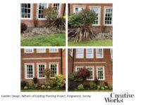 Garden Design, Refresh of Existing Planting Project, Kingswood, Surrey
